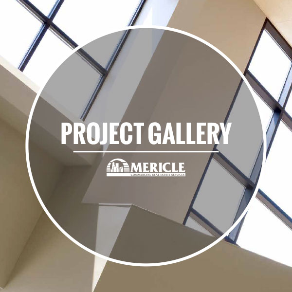 Mericle Project Gallery PDF