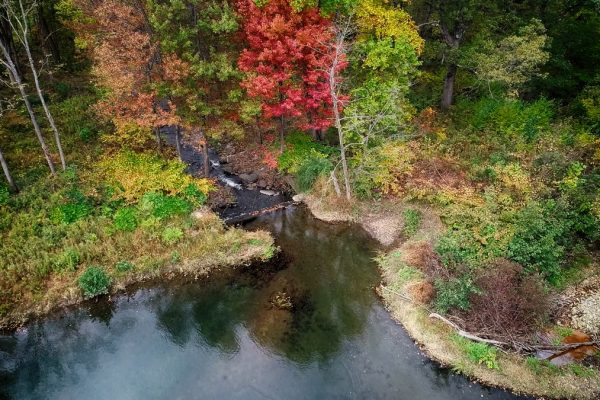 CP_Nature_Fall-4