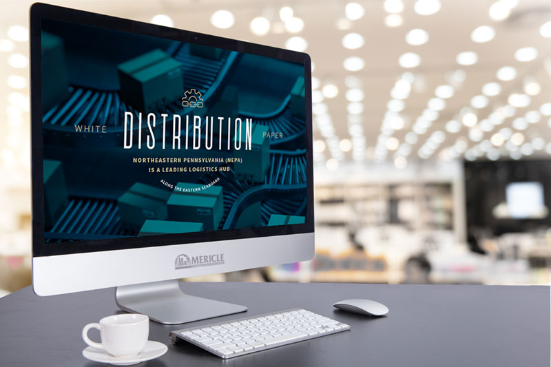 Distribution Market Insights Report
